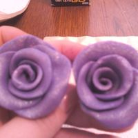 My Purple Roses my moms favorite color they will be going on her cake when I am done baking it! thanks for looking