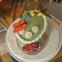 Springtime This was one of my cakes for a Wilton cake decorating class. The butterfly and ladybug are made out of colorflow; flowers are royal icing;...