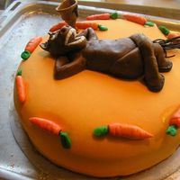 Horse-Cake Horse cake made with MMF