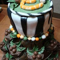 "Baby Shower Safari This is a 2 layer 6 inch vanila cake and chocolate cupcakes I made for a friends safari themed baby shower. The ""E"" is for the..."