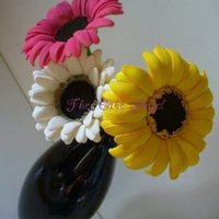 Gerberas Made entirely from gumpaste. Each gerbera is approximately 4 inches in diameter.