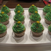 Christmas Tree Cupcakes  I got this idea from others on CC. I made these for a bake-off we had at work as part of our Christmas luncheon. I got honorable mention....