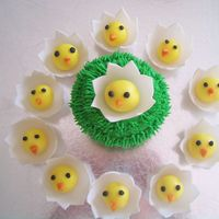 Easter Chicks Just Arrived fondant chicks and egg shells