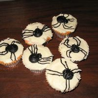 Spider Cupcakes For Halloween   I made these for my 5th grade class. White cake covered with white buttercream and black piped spiders.