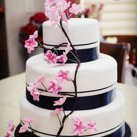 Black And Pink With Apple Blossoms Photo courtesy of Kimi Coopet, of Coopet Photography in the Twin Cities area of Minnesota, used with full rights and permission.This cake...