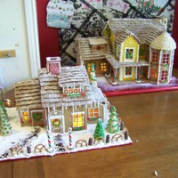 Two Of Them This years gingerbread houses - the biggest is for here - the other I made for a raffle at the local hospice.