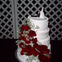 First Wedding Cake  This is my first wedding cake and it was very nerve racking. Looked beautiful on my dining room table, then we had to transport it and it...