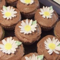 Daisys   Some cup cakes with my first fondant flowers. I enjoyed making them tho it took for ever. thanks for looking.