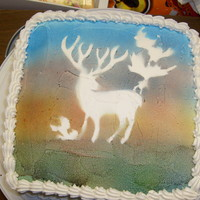 Sunset Elk Chocolate cake with Huckleberry filling and Buttercream frosting. The Wilton black spray wouldn't work well, so I just used the cut...