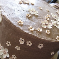 S'mores Cake, Gumpaste Blossoms Chocolate graham cake, marshmallow filling, chocolate buttercream. Gumpaste blossoms with piped chocolate centers. This cake was a...