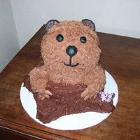 Groundhog Chocolate cake with chocolate buttercream icing. I have to make one of these every year and I'm running out of ideas.
