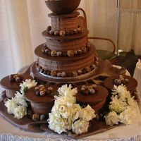 Cakes_007.jpg CSM. This was made for a bridal show- it was a hit with the brides-to-be and the other vendors. :) Idea adapted from the Wilton website....