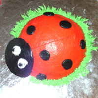 Ladybug Personal birthday cake for a 1 yr. old.Its about 6 inches long and all frosting.