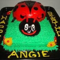 Lady Bug Lady Bug Cake for my cousin Angie's 35th Birthday!
