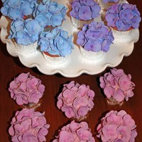 Hydrangeas These hydrangea cupcakes were made from Peggy Porschen's latest book. The flowers took days to complete, but I was really pleased with...