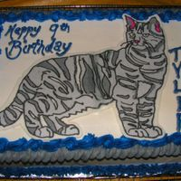 Meow! An Icing Transfer on a 9 x 13 for a little boy who loves grey tabbies.