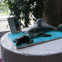 Shark And Sea Turtle Very different style wedding cake for me