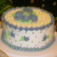 After Decorating  This is what the cake looked like when I was through decorating it. Of course I used buttercream. And I just did a combination of all the...