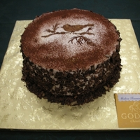 Godiva Tiramisu Cake  Ridiculously scrumptious this cake had shaved chocolate on the side. The top was dusted with cocoa powder over a regular stencil. Done for...