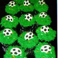 Soccer Cupcakes White cupcakes with green buttercream (made to look like grass) with premade Wilton soccers decorations.