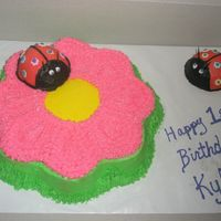 Ladybug Cake Flower pan, mini ball pan for the ladybugs, the lonely ladybug on the right is for the birthday girl to tear into...