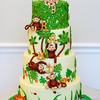 Jungle Cake! I made this cake for my nephew's second birthday, and I think it may be my favorite cake ever! I assembled it on site, so had no idea...