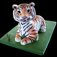 Tiger Cake My entry in the New York Cake Convention. It took 2nd place for 3-D Sculpted Cake, Intermediate Division. Body is all cake. Paws and head...