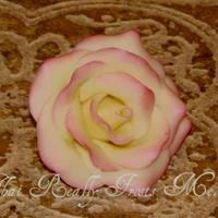 White Chocolate Rose White modeling chocolate rose with pink luster dust on the petal edges. TFL