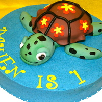 Squirt Here is a cake I made for an adorable little 1 year old. The turtle is carved out of cake. I had to freeze the cake to get it stable enough...