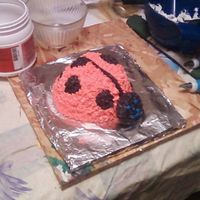 Smash Cake This is for a little girl turning 1. It was her own little lady bug cake.