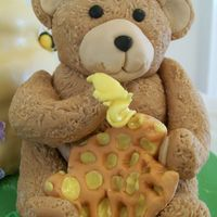 Close Up Of Bear With Honeycomb