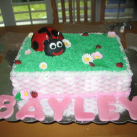 Ladybug 1St Birthday Cake I just made this for my daughter's first birthday party. She's our little ladybug!!Chocolate cake with vanilla frosting. Covered...