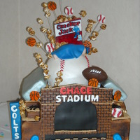 """chace"" Stadium This cake was made for an all sports theme babyshower. The parents were huge Indianapolis Colts Fans and the client wanted to surprise them..."
