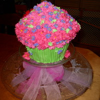 Gracie's Flowers giant cupcake pan, lady bug made from candy melts and candy mold from wilton