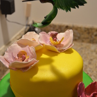 Hummingbird Cake  I made this cake for my mom's 60th birthday. She loves orchids and hummingbirds so I incorporated both into the cake and chose colors...