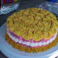 Rosettes I used a pattern from a wilton instruction book. and used all buttercream. The cake wasa hit at the birthday party. Very pretty cake to...