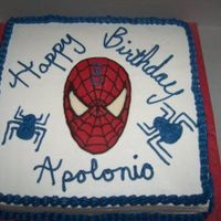 Spiderman Sheet Cake 12x12 sq French Vanilla sheet cake. Indydebi's BC. Spidey's face is a chocolate transfer. I need to practice my writing on cakes...
