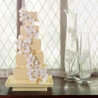 Buttercup/moth Orchid Wedding Cake Hi sugar friends -Last but not least, BloomNet cake #8. This soft buttercup fondant covered cake has a beautiful cascade of moth orchids. A...