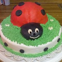 Ladybug! My first cake using homemade marshmallow fondant. Wasn't nearly as easy as I hope it would be.
