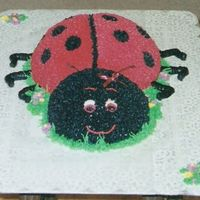 Ladybug Cake this was made for a 1 year old birthday party. Her room was decorating in ladybugs so it fit in well. The picture did not scan very well to...