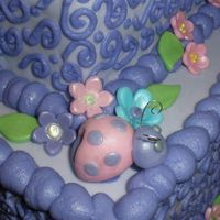Baby Girl Bug Cake close up
