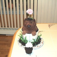 Groundhog Day Flower Pot Birthday Cake This one's a dark chocolate cake filled with layers of vanilla and chocolate buttercream. The groundhog's fur was piped in...
