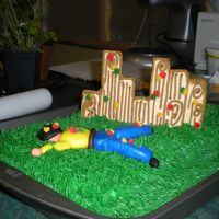 Paintball Theme Cake And Cookies I made this for a customer/friends son's 13th birthday tomorrow. It has not ended in the fashion that I had originally planned but...