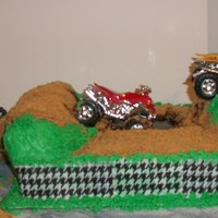 4-Wheeler Mud-Riding This cake was built and decorated by me following my son's instructions on how he wanted my grandson's birthday cake to be. My...
