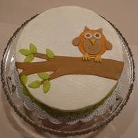 Becky52's Owl Cake This is based on Becky52's adorable owl cake. I was testing a new recipe (vanilla butter cake from the mermaid bakery) and had some...