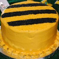 Bumble Bee Soccer Team Party Cake