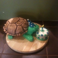 "Turtle's Birthday I did this cake for my boss' wife. She loves turtles. WASC carved out of an 8"". Covered in Modeling chocolate with hand painted..."
