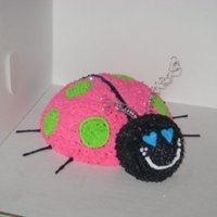 Lady Bug Cake pink and green butter cream lady bug cake.