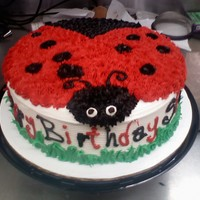 "Lady Bug 10"" all buttercream"