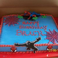 Spider Man 11 x 15 sheet cake all buttercream with bavarian cream filling. Spiderman character and toy webs. Black spiderman in front was cardboard...